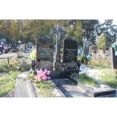 пам'ятник 102